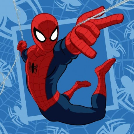 Λαβέτα Spiderman -Disney, DIM Collection